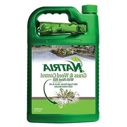 Natria 100532524 Bayer Grass & Weed W/Root Kill RTU, 4 Gal G
