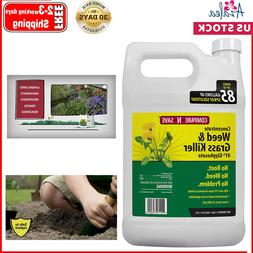 Compare-N-Save 016869 Concentrate Grass and Weed Killer, 41-