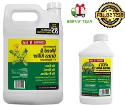 Compare-N-Save Concentrate Grass & Weed Killer, 41-Percent G