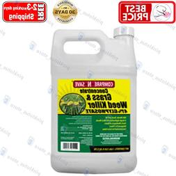 Compare-N-Save Concentrate Grass and Weed Killer, 41-Percent