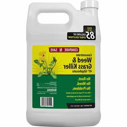Concentrate Grass and Weed Killer, 41-Percent Glyphosate, 1-