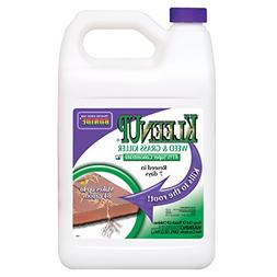 Bonide Products Kleenup 41percent Concentrate 1 Gallon - 746