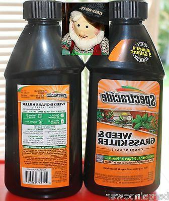 2 weed and grass killer 16 oz