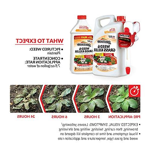 Spectracide Weed Killer Concentrate,