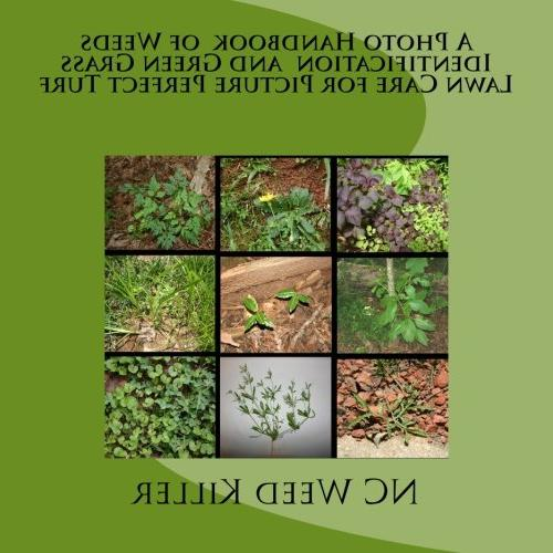 A Photo Handbook  of Weeds Identification  and Green Grass L