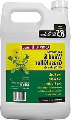 Compare-N-Save 016869 Concentrate Grass & Weed Killer 41% Gl