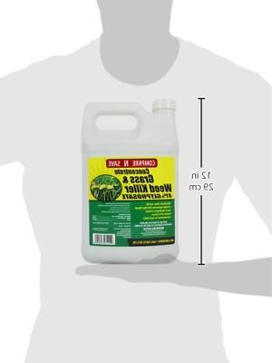 Compare-N-Save Concentrate Grass Weed 41-Percent Glyphosate 1-Gallon