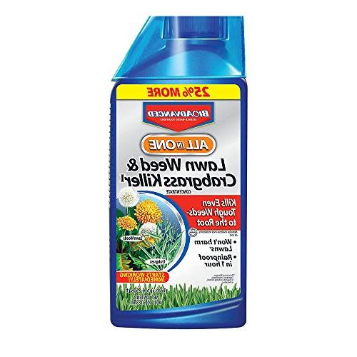 one lawn weed crabgrass killer