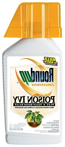 Roundup Weed & Grass Killer Concentrate Plus - 2 16-ounce bo