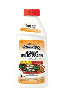 Spectracide Weed and Grass Killer 16-oz Concentrate