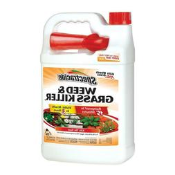 weed and grass killer spray 1 gallon