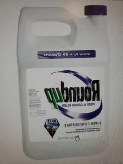 Roundup Weed and Grass Killer Super Concentrate, 1-Gallon in
