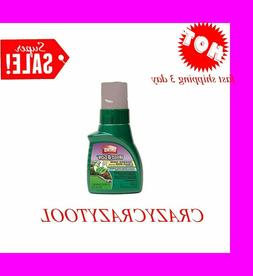 Ortho Weed B Gon Chickweed Clover and Oxalis Killer for Lawn